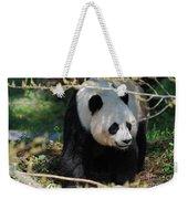 Giant Panda Bear Creeping Under A Tree Branch Weekender Tote Bag