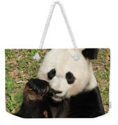 Giant Panda Bear Holding On To Bamboo While Eating Weekender Tote Bag