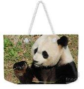 Giant Panda Feeding Himself Shoots Of Bamboo  Weekender Tote Bag
