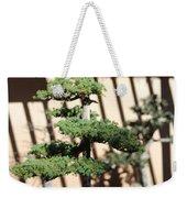 Giant Redwood Bonsai  Weekender Tote Bag