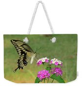 Giant Swallowtail Butterfly II Weekender Tote Bag