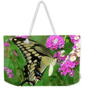 Giant Swallowtail Butterfly  IIi Weekender Tote Bag