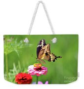 Giant Swallowtail Butterfly On Pink Zinnia Weekender Tote Bag