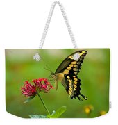 Giant Swallowtail Butterfly Weekender Tote Bag