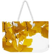 Ginkgo Ginkgo Biloba Leaves In Autumn Weekender Tote Bag