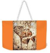 Ginko Weekender Tote Bag