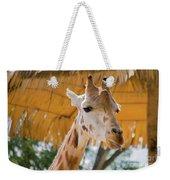 Giraffe In The Zoo. Weekender Tote Bag