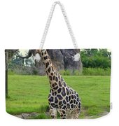 Giraffe With African Baobob Tree Weekender Tote Bag