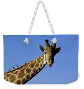 Giraffe With Oxpeckers Weekender Tote Bag