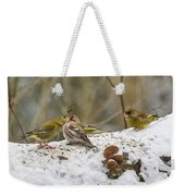Give Me A Kiss. Redpolls And Greenfinches Weekender Tote Bag