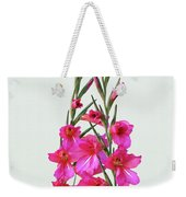 Gladioli Byzantinus In Love Weekender Tote Bag