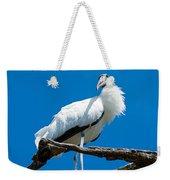 Glamorous Wood Stork Weekender Tote Bag