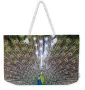 Glassy Peacock  Weekender Tote Bag