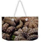 Glistening Octopus For Sale Weekender Tote Bag