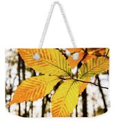 Glowing Beech Leaf Branch Weekender Tote Bag