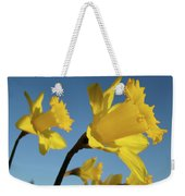 Glowing Daffodil Flowers Floral Art Baslee Troutman Weekender Tote Bag