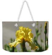 Glowing Yellow Iris Weekender Tote Bag