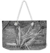 Gnarled Cedar Stump Weekender Tote Bag