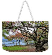 Gnarly Trees Of South Hilo Bay - Hawaii Weekender Tote Bag