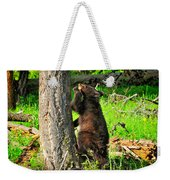 Go Climb A Tree Weekender Tote Bag