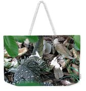 Goanna In Changing Light  Weekender Tote Bag