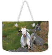 Goat Posing Weekender Tote Bag