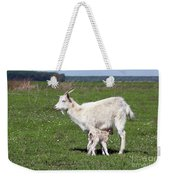 Goat With Just Born Little Goat Spring Scene Weekender Tote Bag