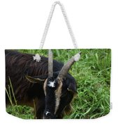 Goat With Long Horns In A Grass Field Weekender Tote Bag