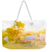 Goats Grazing At Sunset Weekender Tote Bag