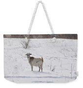 Goats In Snow Weekender Tote Bag