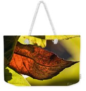 Gold Leaf In Fall Weekender Tote Bag