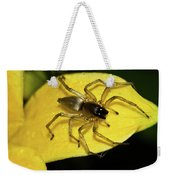 Golden Arachnid  Weekender Tote Bag