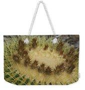 Golden Barrel Cactus Weekender Tote Bag
