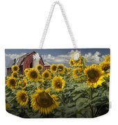 Golden Blooming Sunflowers With Red Barn Weekender Tote Bag