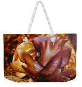 Golden Brown Wild Mushroom Weekender Tote Bag