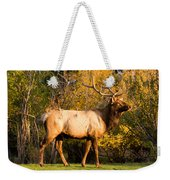 Golden Bull Elk Portrait Weekender Tote Bag