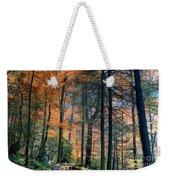 Golden Forest Path Weekender Tote Bag