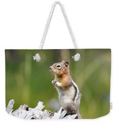 Golden Mantled Ground Squirrel Weekender Tote Bag