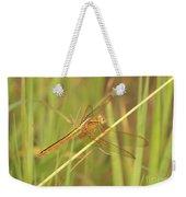 Golden Marsh Dragonfly Weekender Tote Bag