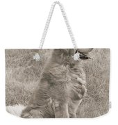 Golden Retriever Dog Sepia Weekender Tote Bag by Jennie Marie Schell