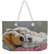 Golden Retriever Dog Sleeping With My Friend Weekender Tote Bag by Jennie Marie Schell