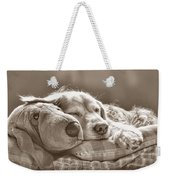 Golden Retriever Dog Sleeping With My Friend Sepia Weekender Tote Bag