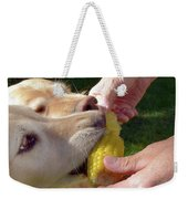 Golden Retriever Dogs Corn Dog Summer  Weekender Tote Bag