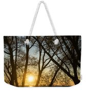 Golden Willow Sunrise - Greeting A Bright Day On The Lake Weekender Tote Bag