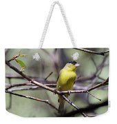 Goldfinch 042914a Weekender Tote Bag