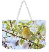 Goldfinch In Spring Tree Weekender Tote Bag