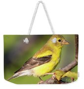 Goldfinch In The Early Morning  Weekender Tote Bag