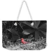 Good Morning Cardinal  Weekender Tote Bag
