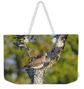 Good Mourning Dove By H H Photography Of Florida Weekender Tote Bag