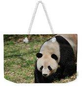 Gorgeous Black And White Giant Panda Bear Walking Weekender Tote Bag